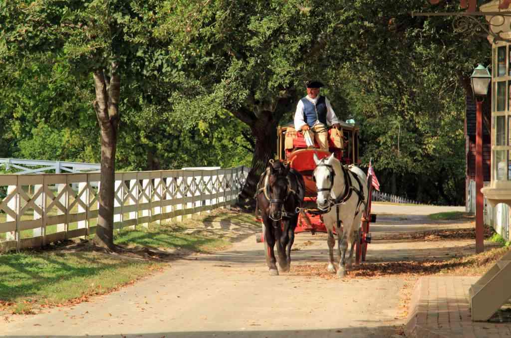 man on horse-drawn carriage in Williamsburg, VA